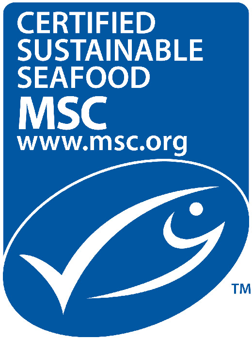 sustainable fishing industry world ocean review
