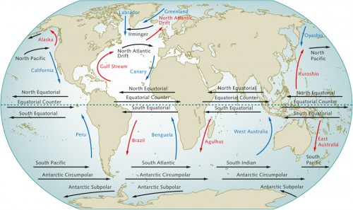 1.10 > The world's large ocean currents are also influenced by the prevailing winds. Warm ocean currents are red, and cold currents are shown in blue. © maribus