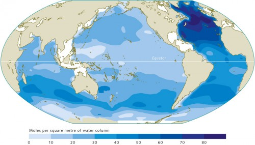 2.4 > The world ocean  takes up anthropo­genic CO₂ everywhere across its surface. The transport into the interior ocean, however, primarily takes place in the North Atlantic and in a belt between 30 and 50 degrees south latitude. The values indicate the total uptake from the beginning of the industrial revolution until the year 1994. © maribus (after Sabine et al., 2004)