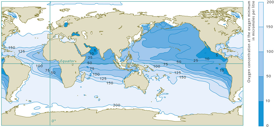 Oxygen world ocean review 215 marine regions with oxygen deficiencies are completely natural these zones are mainly located gumiabroncs Image collections
