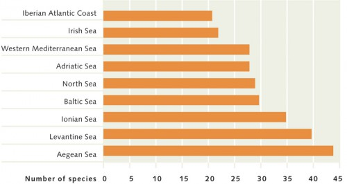 5.10 > The number of ecologically or economically problematic imported species in the most affected marine regions of Europe. ©maribus (after Molnar et al., 2008)