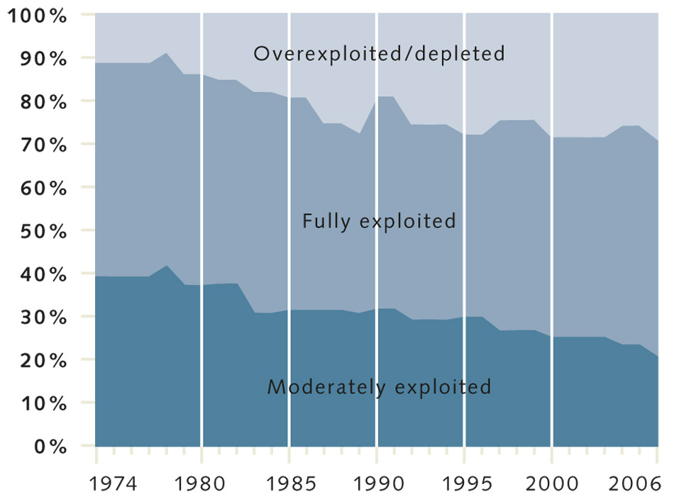 Predatory Fish Have Declined by Two Thirds in the 20th Century