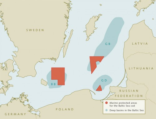 6.16 &gt; In order to promote the recovery of cod, protected areas were established in the deep basins of the Baltic Sea (red). In the case of the Bornholm Basin (BB), however, the survival rate of the brood of the Baltic Sea cod (shown in orange above) proved to be highest outside the protected area.<br /> © maribus (after Rudi Voss/Bastian Huwer, DTU-Aqua)