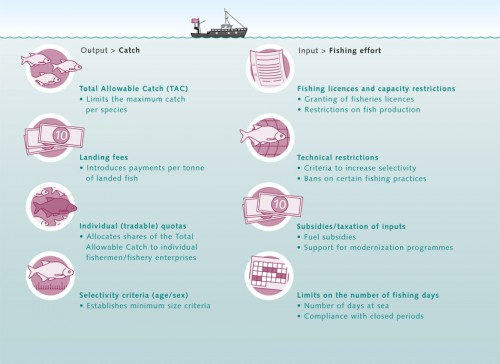 6.13 > Classic approaches to fisheries management either focus directly on restricting catches or attempt to limit fishing effort. However, monitoring these regimes is often fraught with difficulty. © maribus (after Quaas)