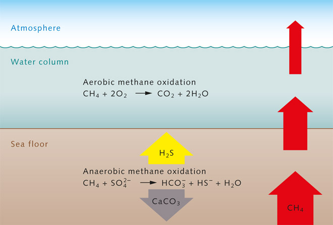 Methane Suppliers
