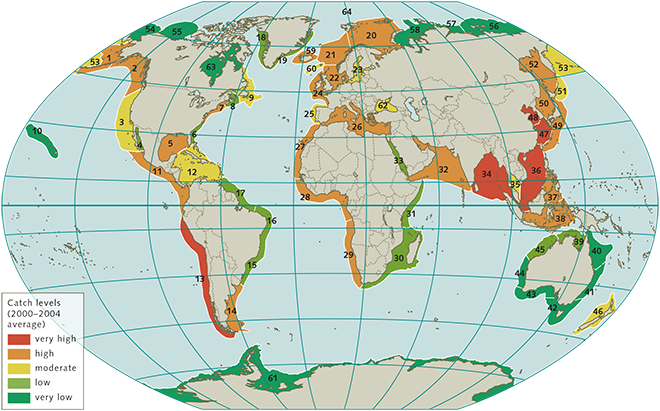 Near coastal ocean regions world ocean review 110 near coastal ocean regions have been divided into 64 large marine gumiabroncs Image collections