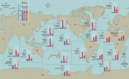 3.7 > The FAO divides the oceans into 19 major fishing areas which differ markedly in their annual catches (in tonnes living weight). The bar charts show the conditions in the corresponding maritime regions. The FAO figures (based on about 500 stocks) are compared with those of an American-German research group (based on about 2000 stocks). Despite the fact that the stock conditions were ascertained using different methods, it is still possible to compare the datasets. The Arctic is not shown in detail due to its limited catches. The red figures show the FAO  number of the corresponding area. These areas differ considerably in their level of productivity. The coastal areas, or more accurately the continental shelves, are usually much more productive than the open seas. In FAO area 81, for example, there are few shelf areas, and the catch is correspondingly low, but the fish stocks are in a good condition (according to FAO data). Therefore, a low catch is not necessarily indic-ative of poor stock condition. © maribus, by FAO