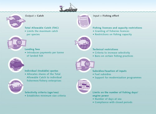"5.10 > Classic approaches to fisheries management either focus on restricting catches or attempt to limit fishing effort. The term ""fisheries management"" encompasses a variety of methods which can be used to regulate the fishing industry. Their suitability in any given context depends on the fish stock and region. © after Quaas"