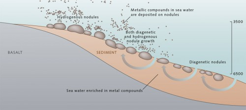 fig. 2.14 > Manganese nodules grow when metal compounds dissolved in the water column (hydrogenous growth) or in water contained in the sediments (diagenetic growth) are deposited around a nucleus. Most nodules are a product of both diagenetic and hydrogenous growth. © after Koschinsky, Jacobs University, Bremen