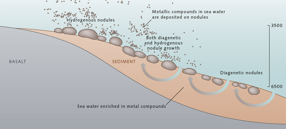Manganese Nodules World Ocean Review