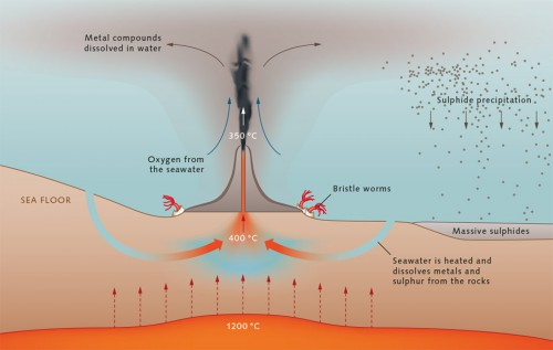 fig. 2.27 > Smokers form in magmatically active ocean regions. Water seeps through fractures in the sea bottom to depths of several thousand metres. Near magma chambers it is warmed to around 400 degrees Celsius and dissolves minerals from the rocks. Because of its low density it rises again and shoots out of the smoker back into the sea. Reaction with the cold seawater causes the formation of mineral particles that are then deposited onto the chimneys of the smoker or the nearby sea floor. © maribus/Sven Petersen