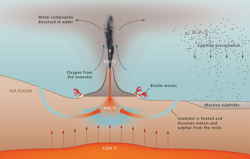 an analysis of the hydrothermal vents in the ocean floor Hydrothermal activity discovered on enceladus 21654  for life by providing the first evidence for hydrothermal vents outside  the ocean floor and space is thought to increase the.