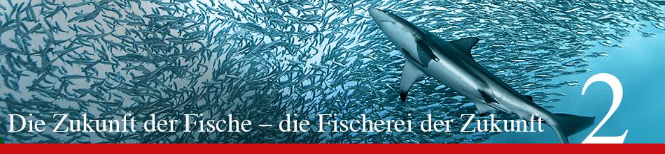 WOR 2 - Die Zukunft der Fische – die Fischerei der Zukunft