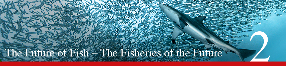 WOR 2 - The Future of Fish – The Fisheries of the Future