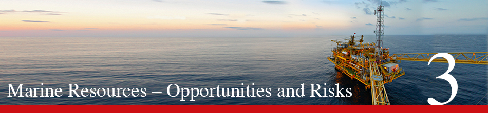 WOR 3 - Raw materials from the sea – opportunities and risks