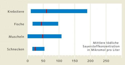 2.13 > Meerestiere reagieren auf Sauerstoffmangel unterschiedlich. Viele Schneckenarten etwa ertragen geringere O₂-Konzentrationen als Fische oder Krebse. Die Grafik zeigt, bei welcher Konzentration die Hälfte der Tiere im Experiment verendet. Der mittlere Wert ist für jede Tiergruppe als roter Strich dargestellt. Die Balken zeigen die Bandbreite: Manche Krebsarten ertragen viel geringere O₂-Konzentrationen als andere. ©maribus (nach Vaquer-Sunyer und Duarte, 2008)