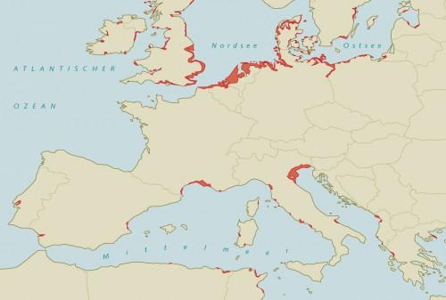 3.10 > Wäre die Küste nicht durch Deiche geschützt, ergäbe sich bei einem Meeresspiegelanstieg von 2 Metern ein solches Bild. Die rot gefärbten Gebiete wären dann permanent überflutet. Nach den aktuellen Prognosen könnte der Meeresspiegel bereits bis Ende dieses Jahrhunderts um 180Zentimeter steigen. ©maribus (nach Brooks et al., 2006)