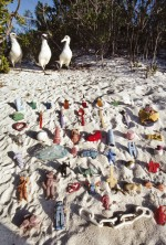 4.12 > The Laysan albatross (Phoebastria immutabilis) is also affected by the litter in the Pacific Ocean, as the birds mistake the brightly coloured plastic for food and ingest it. Here, the photographer has laid out stranded items of debris neatly on the beach. These types of objects are typically found among the stomach contents of albatross, and can cause the death of many of the affected birds. © Frans Lanting/Agentur Focus