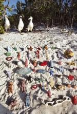 4.13 > Vom Müll im Meer sind auch die Laysanalbatrosse im Pazifik betroffen, die beim Fischen versehentlich Plastikteile verschlucken. Fein säuberlich hat der Fotograf angespülte Abfälle arrangiert. Derartige Gegenstände findet man typischerweise im Magen der Albatrosse. Viele Vögel verenden daran. ©Frans Lanting/Agentur Focus