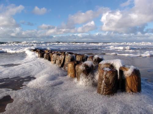 4.1 > Durch die Eutrophierung wird das Wachstum von Algen angeregt, die in der Brandung zu Schaum geschlagen werden, wie beispielsweise an der deutschen Nordseeküste. ©Jochen Tack