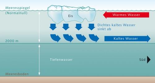 1.6 > Die Funktionsweise der Konvektion im Nordatlantik: In den polaren Regionen, wie etwa in der Labradorsee südlich von Grönland, sinkt kaltes salziges Meerwasser ab. Diese Wassermassen schichten sich in etwa 2000 Metern Tiefe über dem noch dichteren Tiefenwasser antarktischen Ursprungs ein und wandern dort weiter Richtung Äquator. Wärmeres Wasser strömt aus den oberen Meeresschichten in das Konvektionsgebiet nach. ©maribus