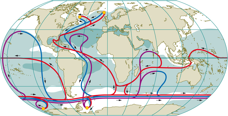 Great ocean currents world ocean review 18 the worldwide ocean currents of the thermohaline circulation system are extremely complex the gumiabroncs Images