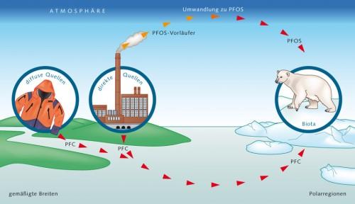 4.9 > PFCs können entweder in Gewässern oder in der Luft über große Entfernungen transportiert werden. So gelangen sie beispielsweise auf direktem Weg über Abwasser in die Flüsse und schließlich ins Meer. Sie können aber auch indirekt über die Atmosphäre transportiert werden. So entweichen beispielsweise flüchtige PFOS-Vorläufer in die Luft, werden hier zu PFOS umgewandelt und kommen in Niederschlägen oder im Staub an anderer Stelle wieder zurück auf die Erdoberfläche. ©maribus