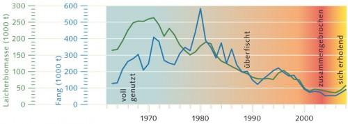 6.1 > Das Beispiel des Nordsee-Kabeljaus zeigt, dass ein Fischbestand zusammenbricht, wenn nicht mehr ausreichend Altfische (Laicher, grün) zur Verfügung stehen, die Nachwuchs zeugen. ©maribus (nach Quaas, FAO Fishstat)