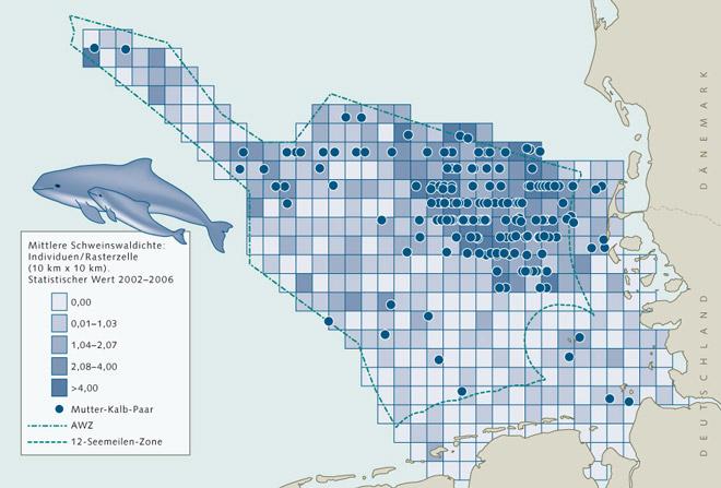 """10.5 > Vor der deutschen Küste kommen Schweinswale vor allem am nördlichen Rand der AWZ an der Grenze zu Dänemark vor. Das Beispiel zeigt, dass sich die Tiere nur durch grenzübergreifenden Artenschutz erhalten lassen, wie ihn die europäische Initiative """"Natura 2000"""" vorsieht."""