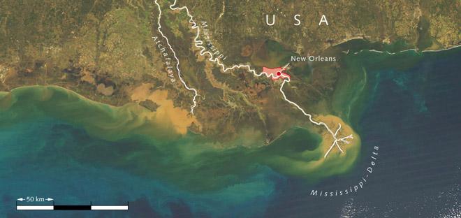 4.5 > Der Mississippi schleppt Unmengen von Sedimenten (gelbbraun) und Nährstoffen in den Golf von Mexiko, die durch den Wind nach Westen die Küste entlang transportiert werden. Die Nährstoffe bewirken ein starkes Algenwachstum (grün). Durch den bakteriellen Abbau der Algen in der Tiefe wird Sauerstoff verbraucht. Dadurch entsteht in einem weiten Areal entlang der US-Küste eine völlig sauerstofffreie Todeszone.