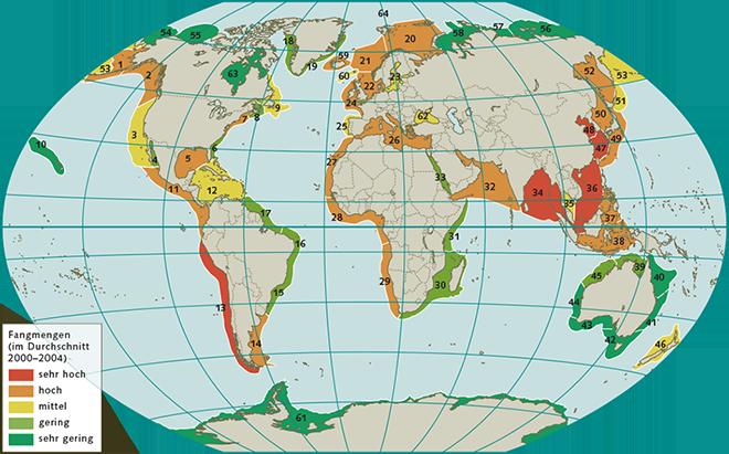 1.10 > Die küstennahen Meeresgebiete der Welt wurden in 64große, länderübergreifende Meeresökosysteme eingeteilt, die sogenannten Large Marine Ecosystems. Von diesem Konzept erhofft man sich eine bessere Zusammenarbeit der Nationen beim internationalen Meeresschutz. Je nach Intensität des Fischfangs im Zeitraum 2000 bis 2004 sind die einzelnen LMEs unterschiedlich eingefärbt. Bis heute ist der Fischereidruck in vielen Meeresgebieten unverändert hoch.