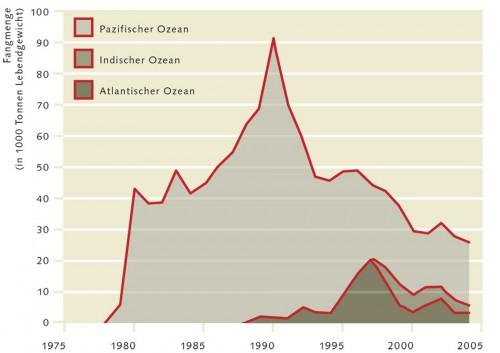 3.19 > Die Fangmengen vieler Tiefseefische wie hier des Granatbarschs nahmen innerhalb weniger Jahre rapide ab, weil die Bestände schnell überfischt waren. © www.fao.org/docrep/009/a0653e/a0653e07.htm