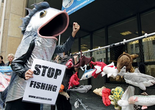 5.18 > Brussels: animal rights activists protest about overfishing. © Yves Logghe/AP Photo/ddp images