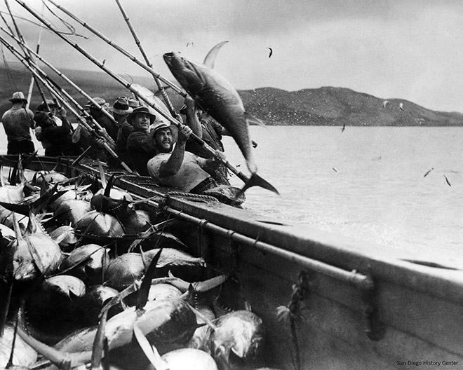3.12 > Gelbflossenthun zu fangen war früher harte körperliche Arbeit, wie hier in den 1930er Jahren vor den Galápagos-Inseln.  © Courtesy of Claire Alves, Portuguese Historical Center/San Diego History Center