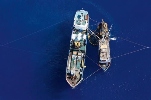 3.25 > Transshipment is typical of IUU fishing. As seen here off the coast of Indonesia, smaller fishing vessels transfer their illegally caught fish onto larger refrigerated transport ships (reefers). The fishing vessels are restocked with fuel and supplies at the same time, enabling them to remain at sea for many months. © Alex Hafford/AFP ImageForum/Getty Images
