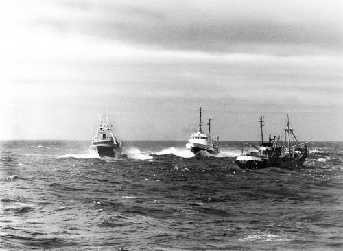 """5.9 > Während der Kabeljaukriege versucht das isländische Schiff """"Ver"""" (links), die Netzleine des britischen Trawlers """"Northern Reward"""" (rechts) zu durchtrennen. Der britische Bergungsschlepper """"Statesman"""" geht dazwischen. © National Museum of the Royal Navy"""