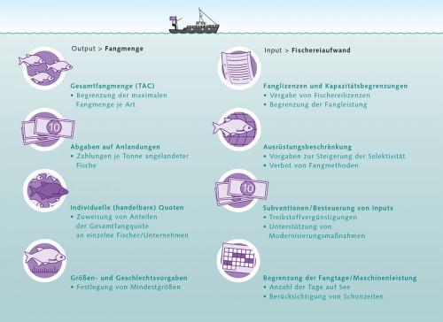 5.10 > Die Regulierungen der Fangmenge und des Fischereiaufwands sind klassische Ansätze des Fischereimanagements. Darunter fasst man verschiedene Methoden zusammen, die je nach Fischbestand oder Region besser oder schlechter geeignet sind, um die Fischerei zu regulieren. © nach Quaas