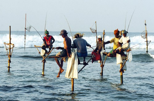 5.14 >  Fishing without bycatch: stilt fishermen in Sri Lanka's coastal waters wait patiently for their prey, which they haul out of the water with rods and landing nets. © Lakruwan Wanniarachchi/AFP/Getty Images
