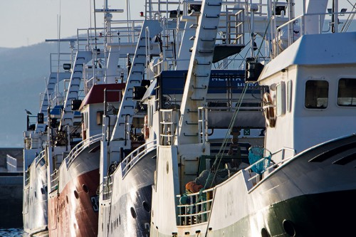 5.17 > Generous subsidies, large fleets: the Spanish fishing fleet in particular – part of which is seen here in the port of Muros – was dependent on state subsidies for many years. © Xurxo Lobato/Getty Images