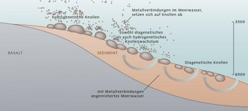 Abb. 2.14 > Manganknollen wachsen, indem sich im Wasser gelöste Metallverbindungen aus dem freien Wasser (hydrogenetisches Wachstum) oder dem im Sediment enthaltenen Wasser (diagenetisches Wachstum) an einem Keim ablagern. Meist wachsen Knollen sowohl dia- als auch hydrogenetisch. © nach Koschinsky, Jacobs University, Bremen