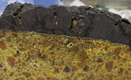 Abb. 2.24 > Im Querschnitt ist die schwarze, mehrere Zentimeter dicke Kobaltkruste auf dem hellen Vulkangestein gut erkennbar. Das Gestein stammt aus der Louisville-Seebergkette im Südwestpazifik, zu der mehr als 70 Seeberge gehören. © BGR