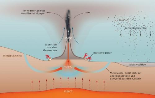 Abb. 2.26 > Raucher entstehen in magmatisch aktiven Meeresregionen. Durch Risse im Meeresboden sickert Wasser mehrere Tausend Meter tief in den Untergrund. In der Nähe von Magmakammern erwärmt es sich auf bis zu rund 400Grad Celsius und löst Mineralien aus dem Gestein. Aufgrund seiner geringen Dichte steigt es auf und schießt über die Raucher zurück ins Meer. Durch die Reaktion mit dem kalten Meerwasser bilden sich Mineralienpartikel, die sich in den Kaminen der Raucher oder auf dem Meeresboden ablagern. © maribus/Sven Petersen