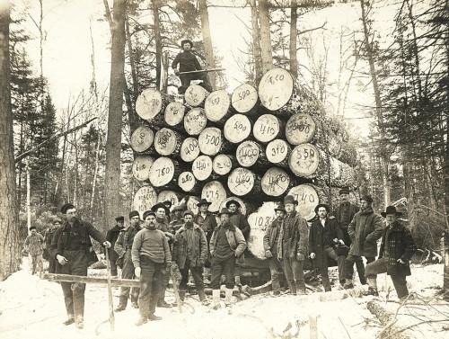 Abb. 1.2: Waldbauern im US-Bundesstaat Minnesota Ende des 19. Jahrhunderts. Damals war Holz in den USA ein besonders gefragter Rohstoff. Der Häuserbau in den wachsenden Städten erforderte Unmengen des Rohstoffs. © Nixon, Harry F./Minnesota Historical Society