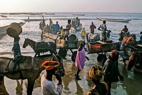 """Abb. 2.7: Fischer am Strand von Kayar, Senegal. Mit ihren Einbaumschiffen, den Pirogen, fahren sie aufs Meer hinaus, um die lokalen Märkte mit Fisch zu versorgen. Zehntausende an Senegals Küste betreiben """"la pêche artisanale"""" – das handwerkliche Fischen. ©Bruno Barbey/Magnum Photos/Agentur Focus"""