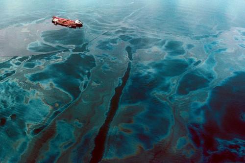 """Abb. 2.14: Bei der Havarie des Tankers """"Exxon Valdez"""" 1989 vor Alaska wurde ein Küstenstreifen von 2000 Kilometer Länge verölt. Dort befinden sich mehrere Vogel- und Naturschutzgebiete. © Natalie Fobes/Getty Images"""