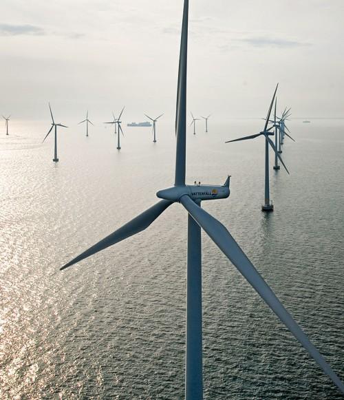 Abb. 3.12: Windparks im Meer können einen großen Beitrag zur Stromversorgung leisten. Allerdings sollte vor dem Bau stets überprüft werden, ob dadurch empfindliche Meereslebensräume zerstört werden. © www.paul-langrock.de