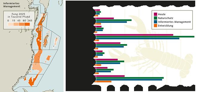 Abb. 4.22: Dank eines professionellen Planungs- und Modellierungsprogramms lässt sich für Belize vorhersagen, mit welchen Erträgen die lokale Hummerfischerei in den einzelnen 9 Planungsgebieten im Jahr 2025 rechnen kann. Es zeigt sich dabei, dass das Naturschutzszenario die höchsten und das Entwicklungsszenario die schlechtesten Werte aufweist. © nach CZMAI
