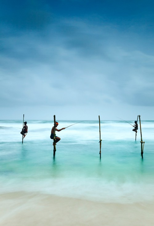 fig. 4.23: Small-scale fisheries are still very important in many countries. Fishing techniques vary considerably from country to country. The photo shows traditional stilt fishermen near the town of Galle on the Sri Lankan coast. © Kimberley Coole/Lonely Planet/Getty Images