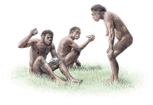 Abb. 1.12: Der Frühmensch <em>Homo ergaster</em> verfügte bereits über viele Fähigkeiten des modernen Menschen. So konnte er Werkzeuge herstellen. Dies könnte dazu beigetragen haben, dass er sich vor etwa 2 Millionen Jahren von Afrika nach Norden und Osten ausbreitete. © Science Photo Library/akg-images