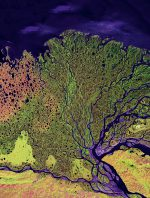 fig. 1.19: This satellite photo shows the Lena River delta in Siberia with all its fine structures, extending around 150 kilometres into the Laptev Sea. A large proportion of the sea ice that eventually drifts out into the Arctic Ocean originates in this marine region. © Image provided by the USGS EROS Data Center Satellite Systems Branch. This image is part of the ongoing Landsat Earth as Art series/NASA
